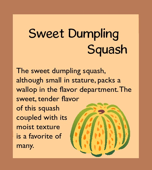Guide to Squash