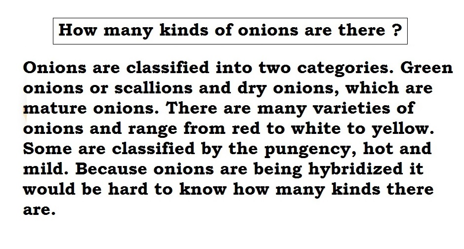 Visual Guide to Cooking with Onions and Garlic