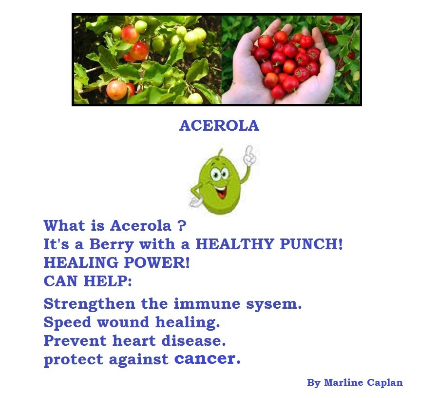 Just Eat Veggies Food Remedies About Acerola