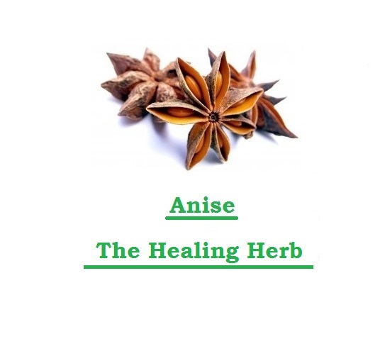 Anise, The Healing