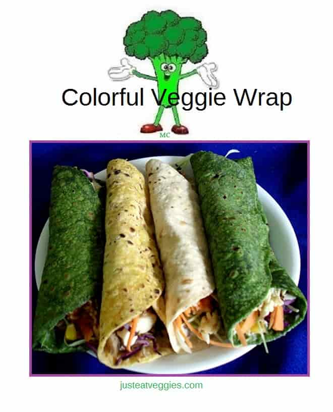 colorful veggie wrap burrito